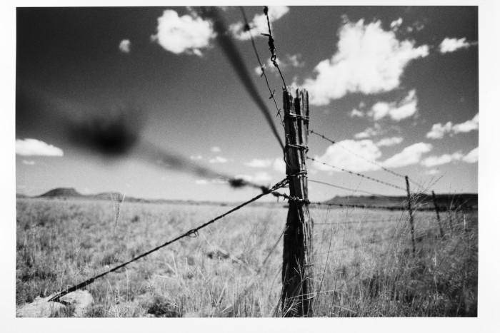 ken-gerhardt-at-ndiza-gallery5