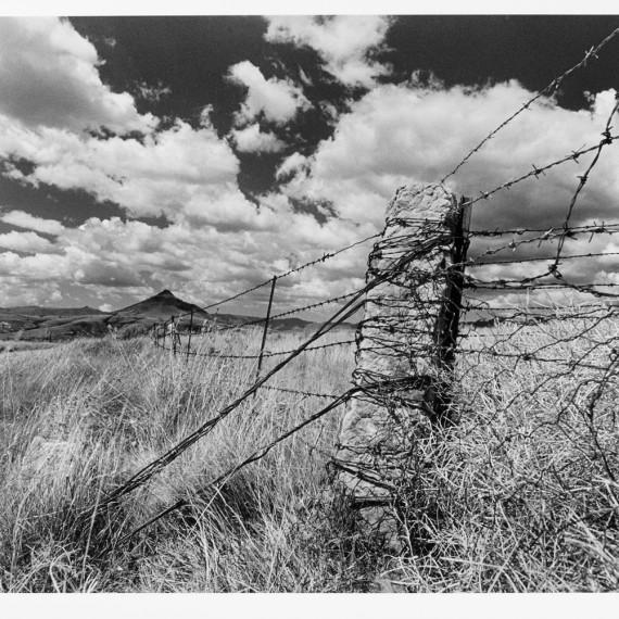 ken-gerhardt-at-ndiza-gallery8